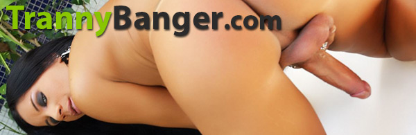 Enter trannybanger here