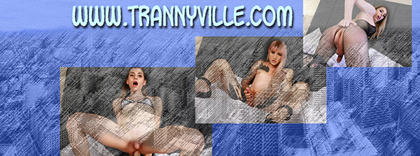 Enter trannyville here